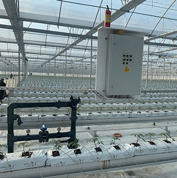 Turnkey Greenhouse Project